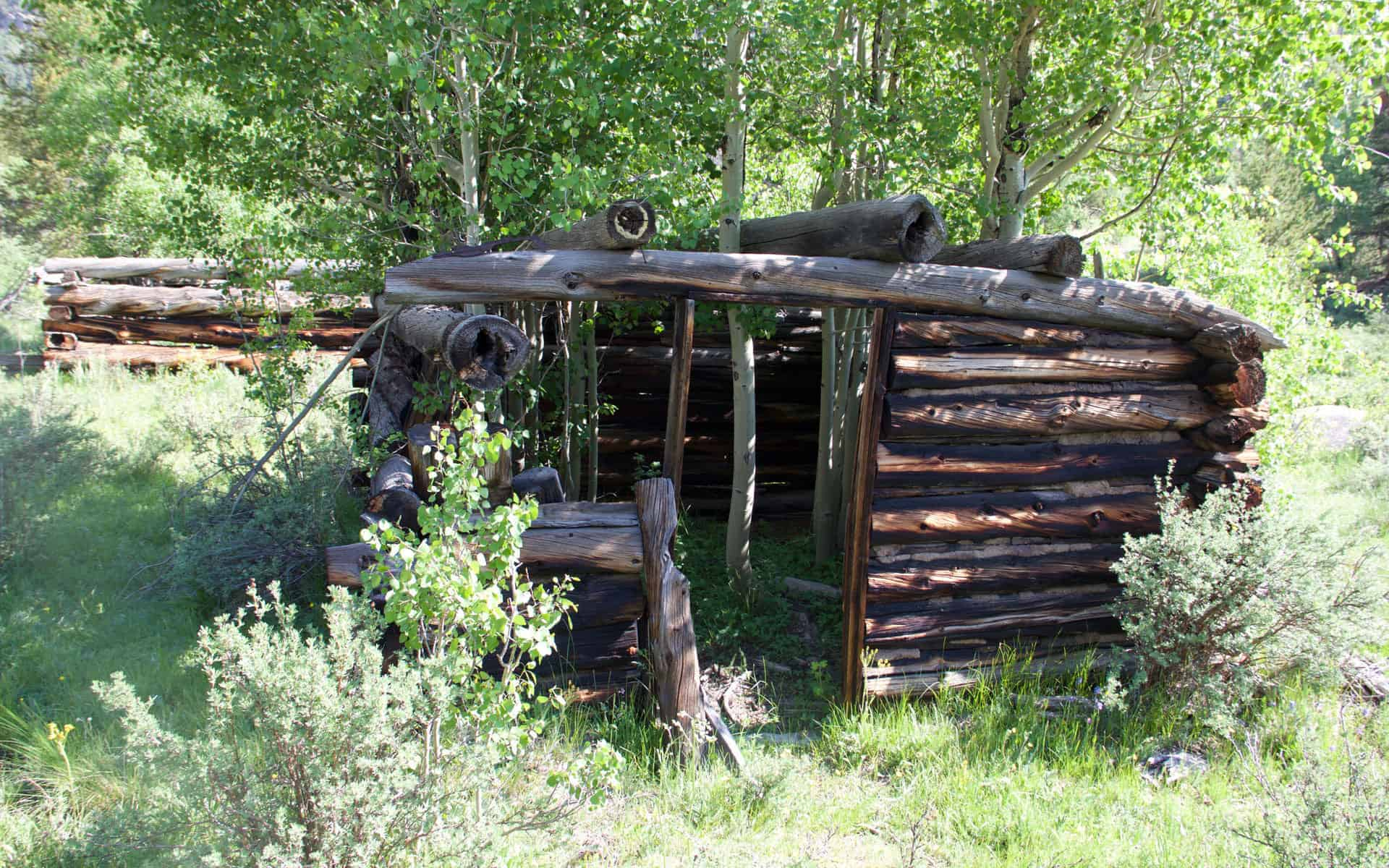 Old cabin at Davis Meadow